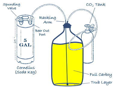 Closed Carboy to Keg Transfer System