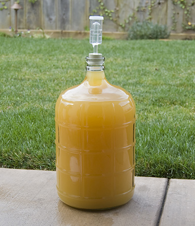 Mead in Carboy