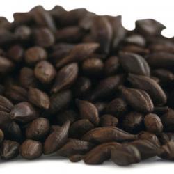 Muntons Chocolate Malt