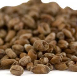 Weyermann® Dark Wheat