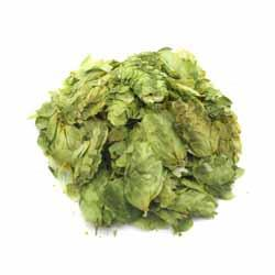 Columbus Leaf Hops