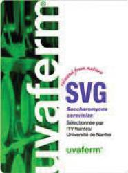 Dry Wine Yeast - Uvaferm SVG (8 g)