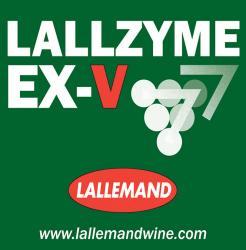 Lallzyme EX-V 100 g