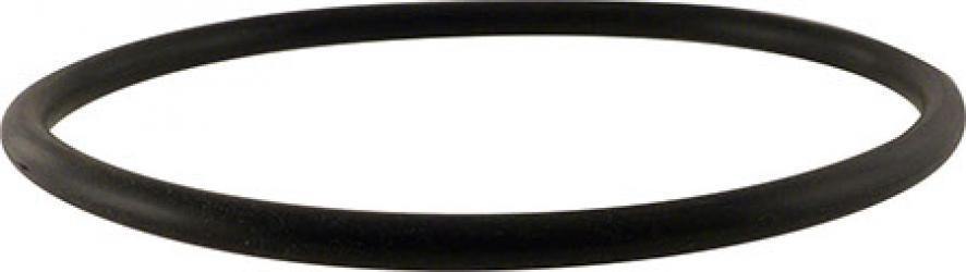 Blichmann HopRocket - Replacement O-ring