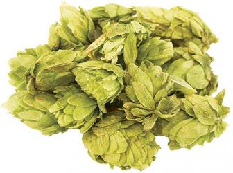 Willamette Whole Hops (2 oz)