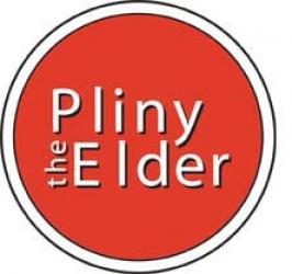 Russian River's Pliny the Elder - Extract Beer Kit