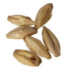 Melanoidin 1 lb Milled