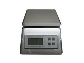 Electronic Stainless Steel Scale - 13 lbs.
