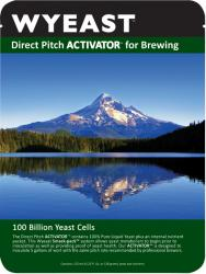 Yeast (Liquid) - Wyeast (Trappist High Gravity ) - 3787