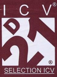 D21 Dry Wine Yeast (8 g)