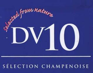 DV10 Dry Wine Yeast (500 g)