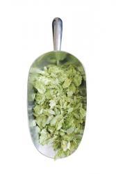 US Simcoe® Hop Leaf